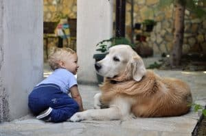 What Are The Benefits Of Raising A Baby With A Dog