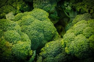 Can Dogs Eat Cauliflower or Broccoli